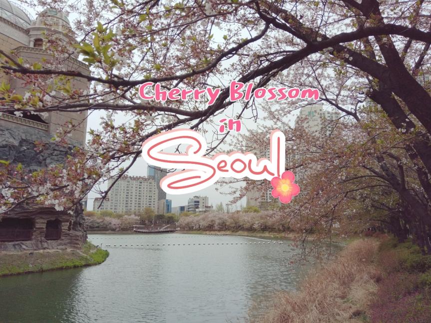 Seoul in love #2 ทริปตามหา Cherry Blossom เกาหลีที่กรุงโซล