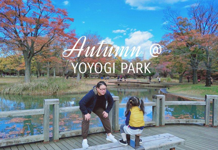 ใบไม้เปลี่ยนสีที่ Yoyogi Park โตเกียว พร้อมรีวิววิธีเดินทาง